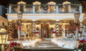 Zoom Holiday House Background